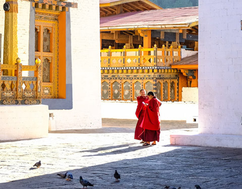 7 Days In-depth Bhutan Tour