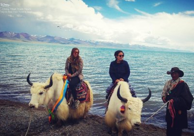 Traveler photo: Wha an excellent experience to ride a yak and photo with Namtso Lake. (June 2020)