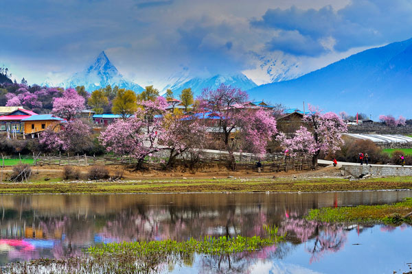 Tibet Nyingchi Prefecture in Spring