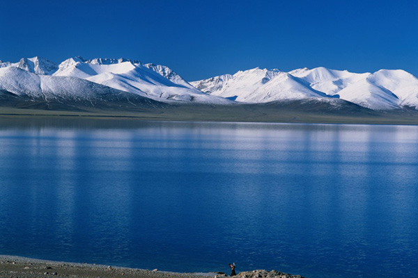 Qinghai Lake in Winter