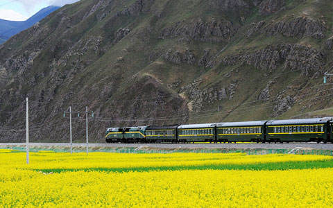 Tibet Train + Lhasa Essence Group Tour (5 Days)