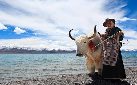 6 Days Lhasa Small Group Tour with Holy Lake Namtso