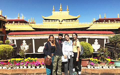 Tibet Train + Lhasa and Namtso Group Tour (7 Days)