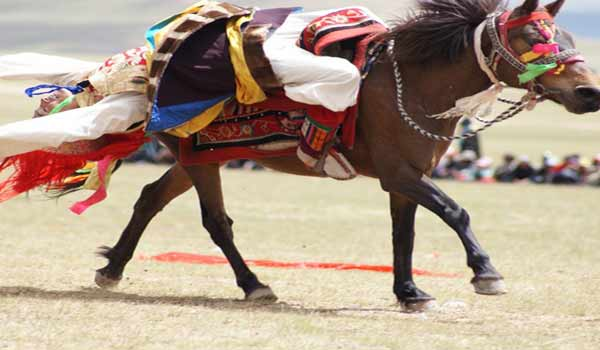 Nagchu horse racing festival is the grandest horse riding competition in northern Tibet