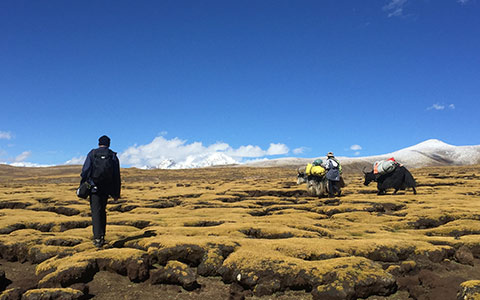 9 Days Tibet Trekking Tour from Tsurphu to Yangpachen