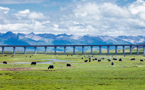 13 Days Chengdu, Lhasa, Xian and Beijing Tour with Tibet Train Experience
