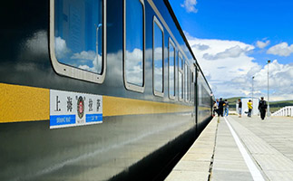 Platform scenery of Tibet train