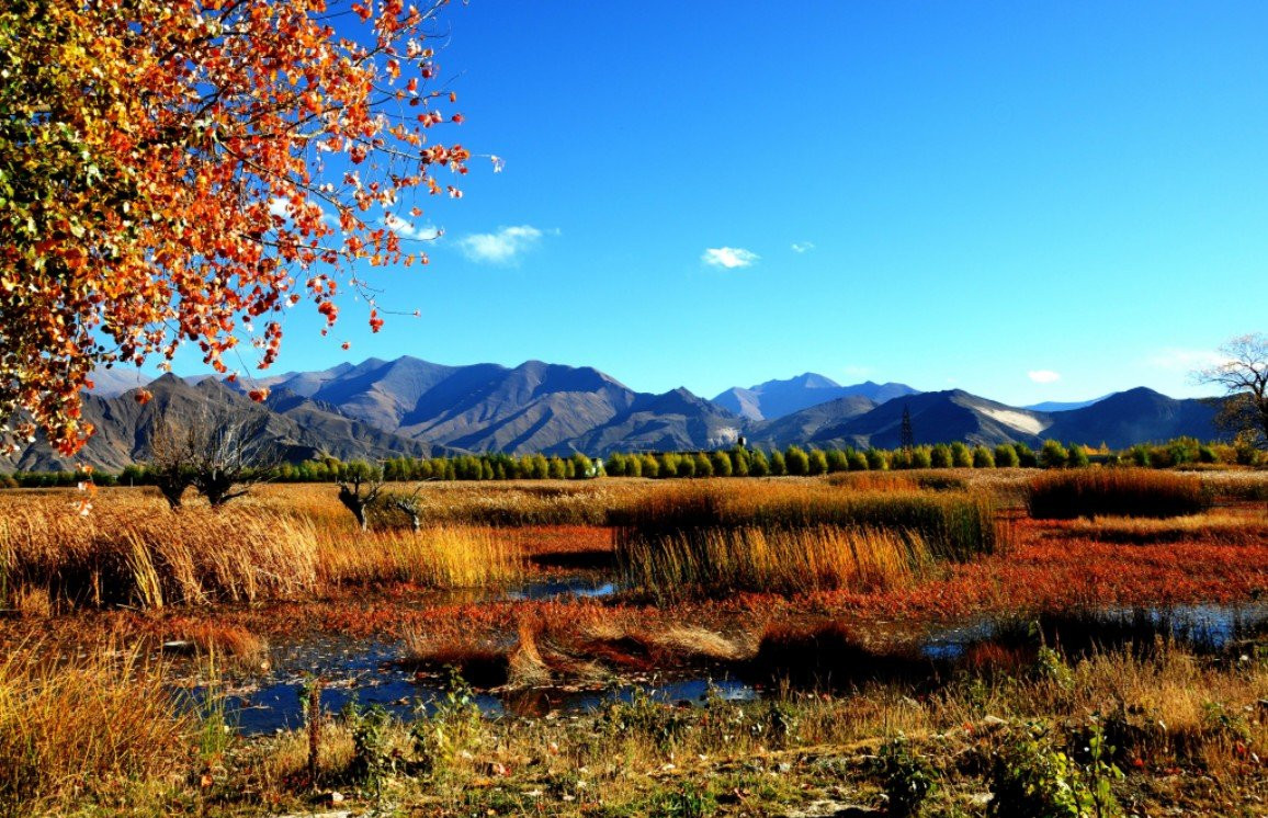 Two Wetlands in Tibet Applies for National Natural Reserves