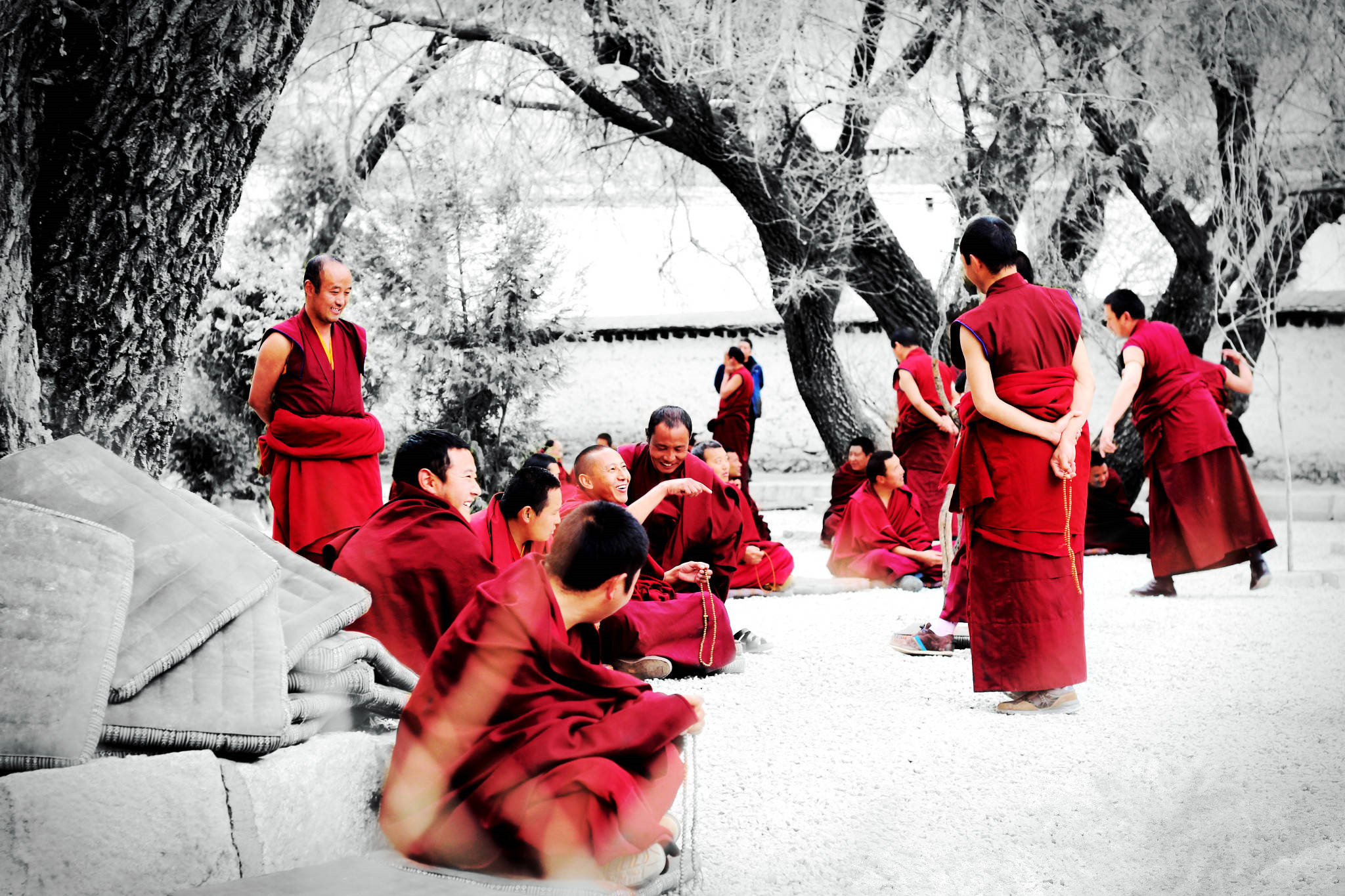Monks Debate on Sutra of Tibetan Buddhism in Lhasa